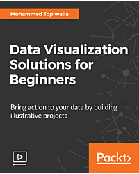 Data Visualization Solutions for Beginners [Video]