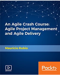 An Agile Crash Course: Agile Project Management and Agile Delivery [Video]